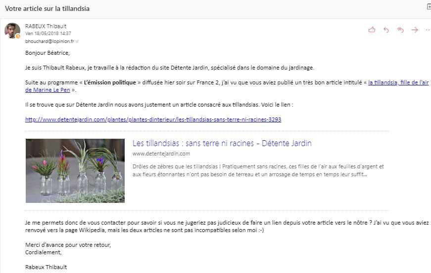 tillandsia_1-obtenir-backlink-trucs-de-blogueuse