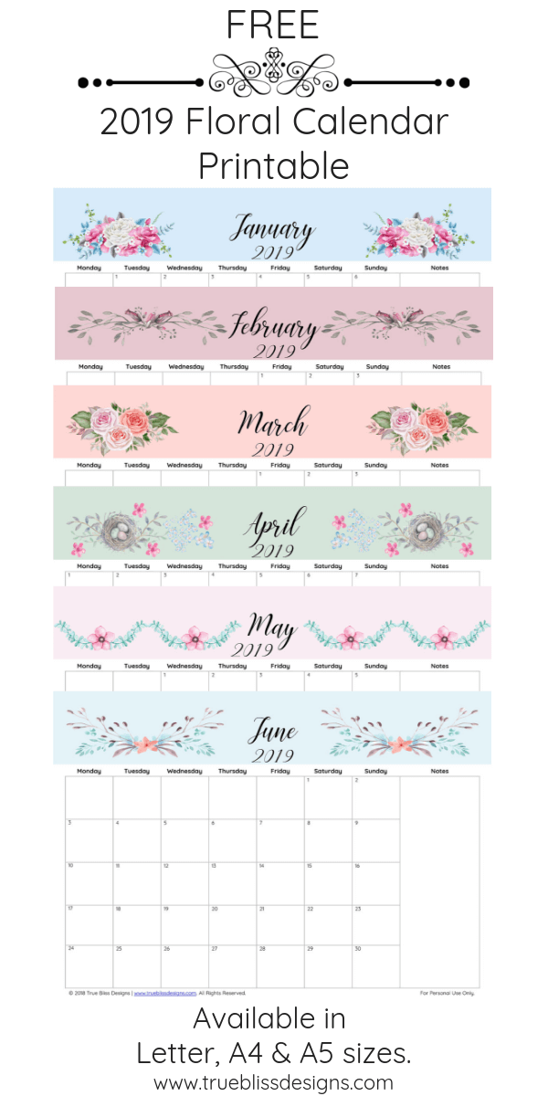 Download a free 2019 floral calendar today! This landscape monthly calendar is filled with lots of beautiful illustrated watercolor flowers and each month has a different design and space for notes. It's available in Letter, A4 and A5 size so whether you intend to use it in a planner or binder, there is a size to fit your needs. For more freebies, visit www.trueblissdesigns.com.