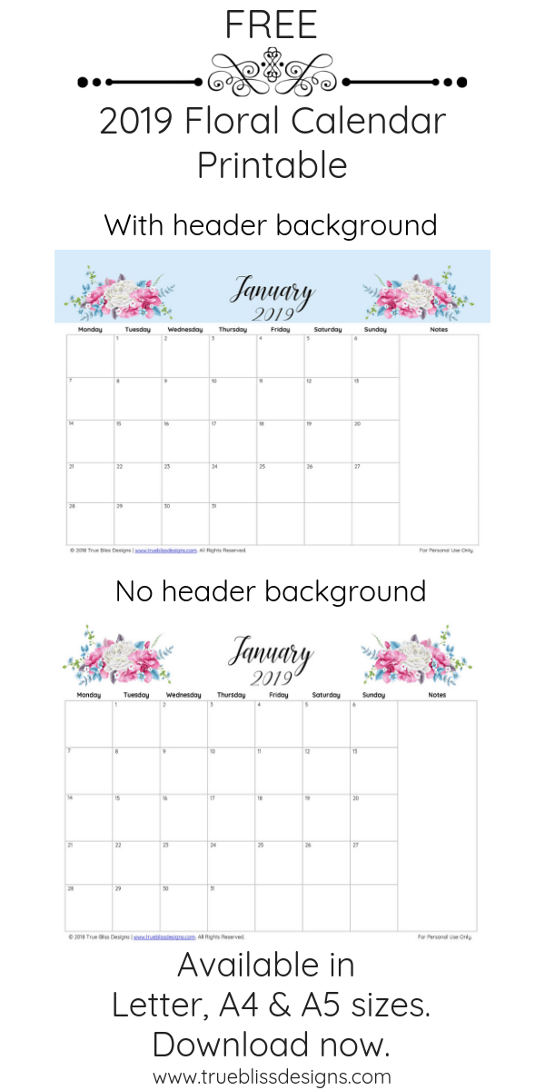 Download a free 2019 floral calendar today! Filled with lots of beautiful illustrated watercolor flowers, each month has a different design, is landscape and has space for notes. It's available in Letter, A4 and A5 size so whether you intend to use it in a planner or binder, there is a size to fit your needs. For more freebies, visit www.trueblissdesigns.com.