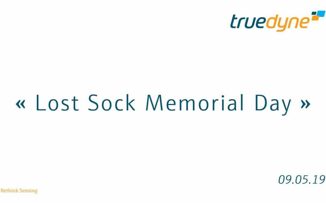 0509_e_Tag der verlorenen Socke