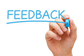 freelance consultant ask for client feedback