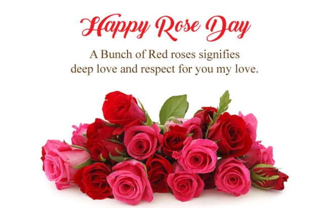Happy Rose Day Quotes in English - 7th Feb Happy Rose Day Images with Shayari