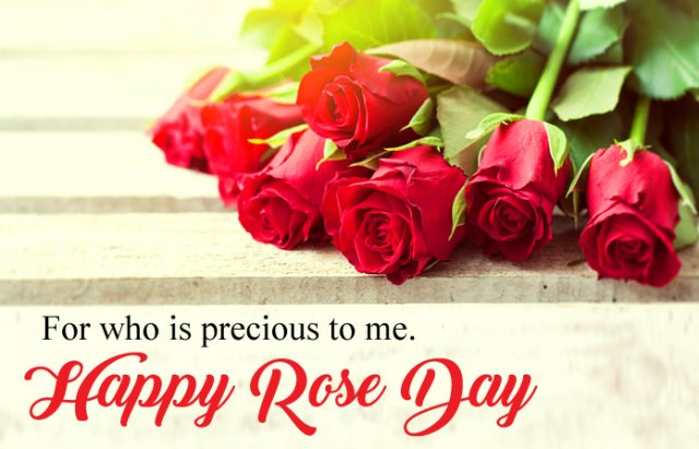 Happy 7th Feb Rose Day Image for Boyfriend - 7th Feb Happy Rose Day Images with Shayari