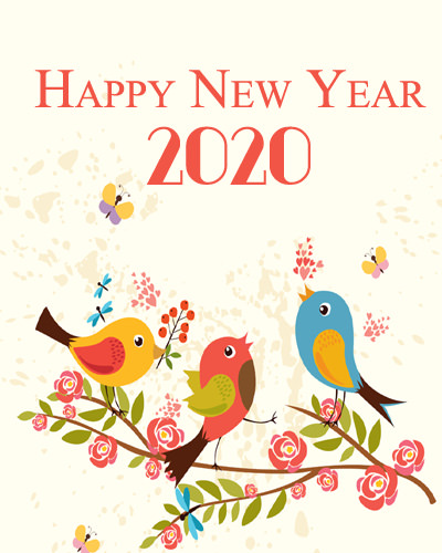 Cute New Year 2020 DP with Bird Pics