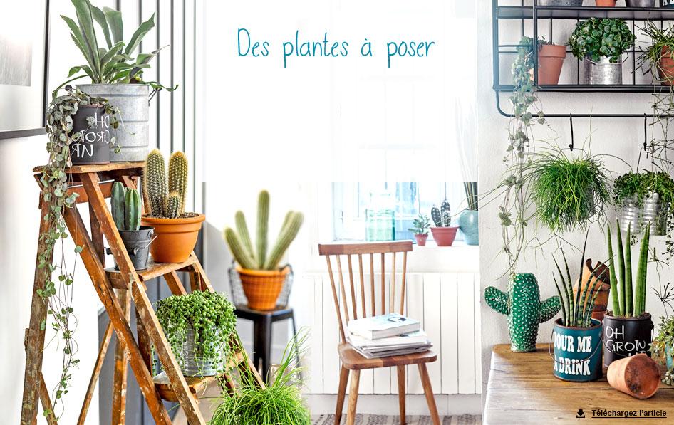 Atelier Nature Dcoration Dintrieur Et Plantes