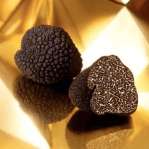 Truffes Fraîches