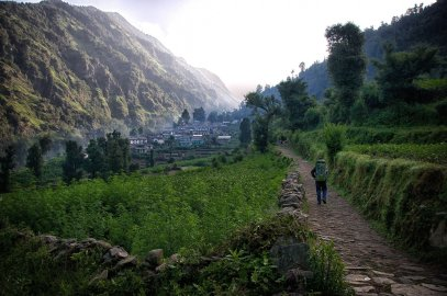 On the road to the village of Khati. Yes, that's a big field of cannabis next to the trail.