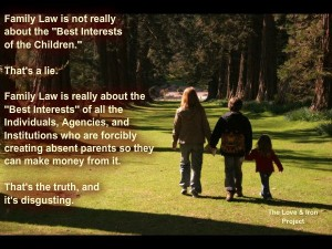 FAMILY LAW LIES