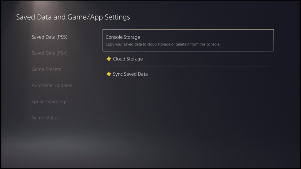 PS5 download data