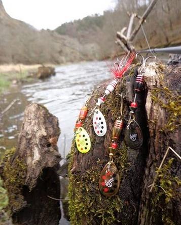 Amostras de pesca à truta Suissex