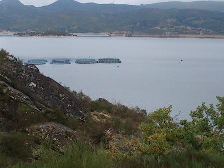 Barragem dos Pisões condições de pesca Setembro 2015 - 2