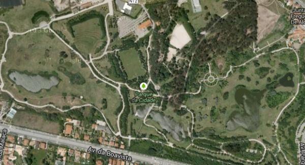 Lagoas - Parque da Cidade do Porto