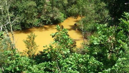 Poluição no Rio Coura Covas 2013