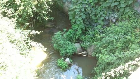 Rio Sousa - poluição - Paredes
