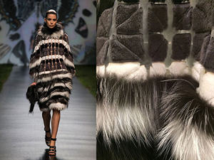 Fur in the news4
