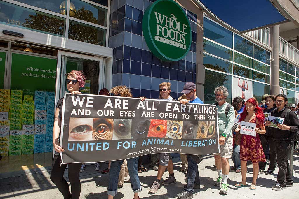 Direct Action Everywhere is the new face of animal rights activism