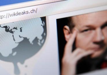 WikiLeaks case wins against visa contractor
