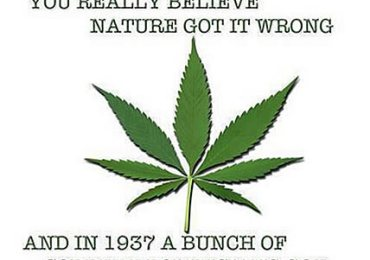 marijuana benefits