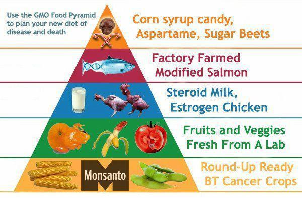 GMO-Food-Pyramid-to-plan-your-new-diet-of-disease-and-death