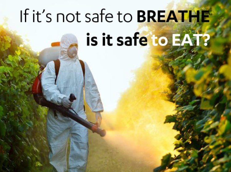 If-its-not-safe-to-breathe-is-it-safe-to-eat
