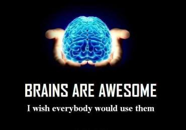 Everyday Things That Benefit Our Brain.