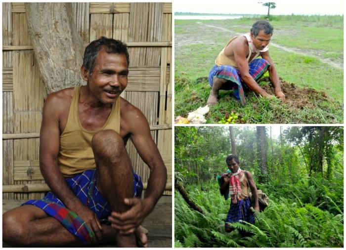 jadav-payeng-collage