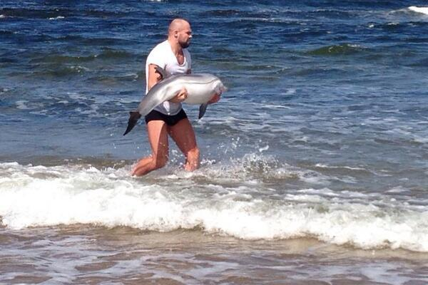8. MMA fighter tries to rescue dolphin that washed ashore.
