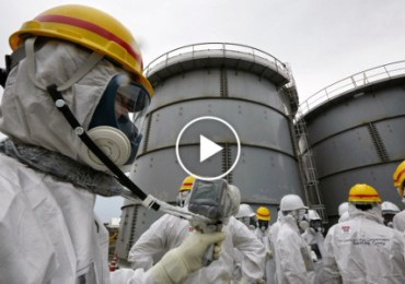 Fukushima_Truth