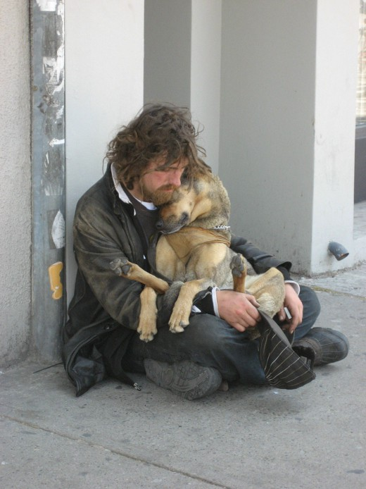 homeless-dogs-love