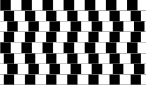 brain_optical_illusion