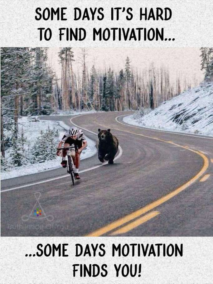 Some days it's hard to find motivation... ...some days motivation finds you!