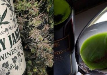 say-hello-to-weed-wine-which-will-get-you-high-and-drunk-at-the-same-time