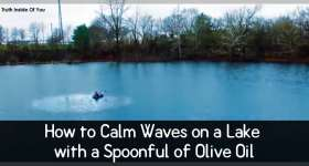 Calm Waves Lake Oil