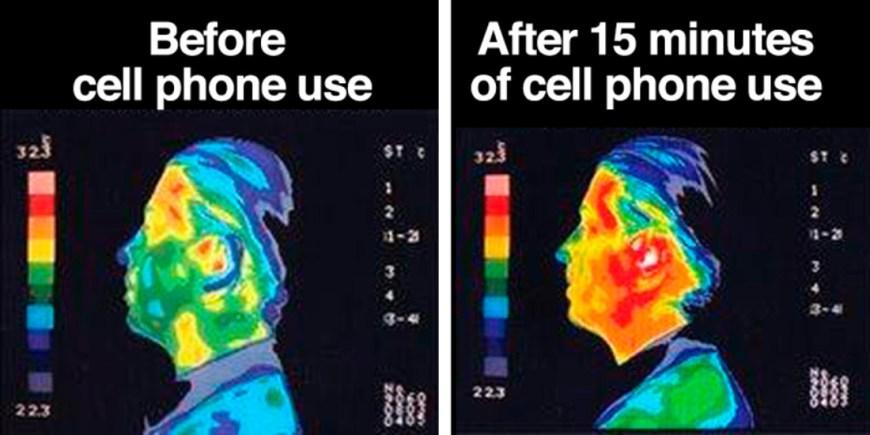 Image result for cell phone radiation danger
