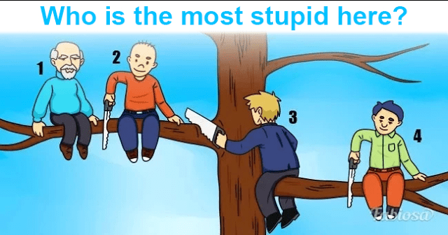 Who Is the Most Stupid