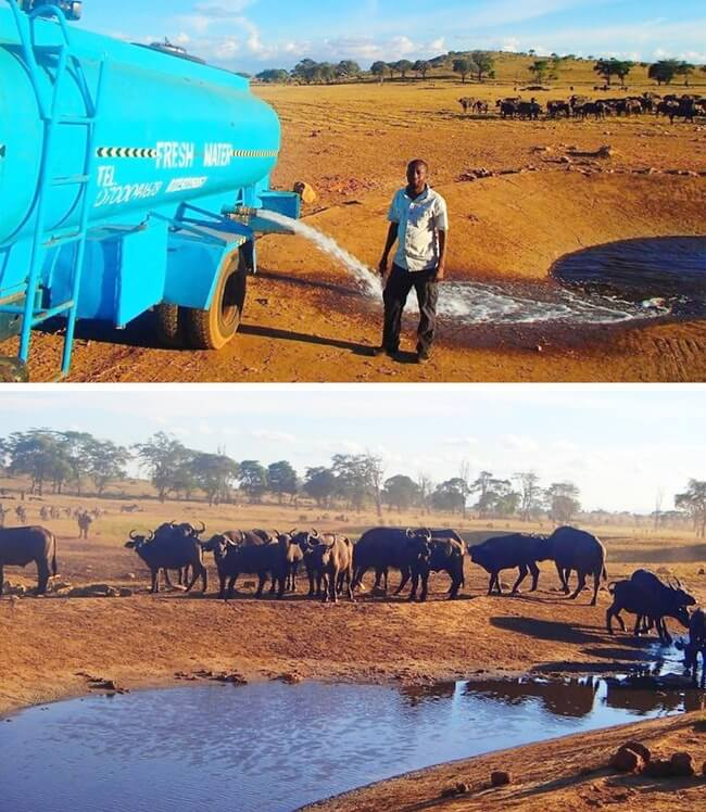 9. This man drives hours in drought conditions every day to give water to thirsty wild animals.