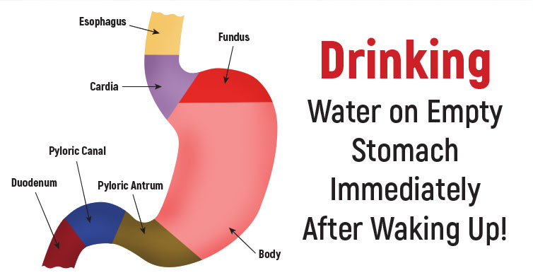 Drink Water On Empty Stomach Immediately After Waking Up