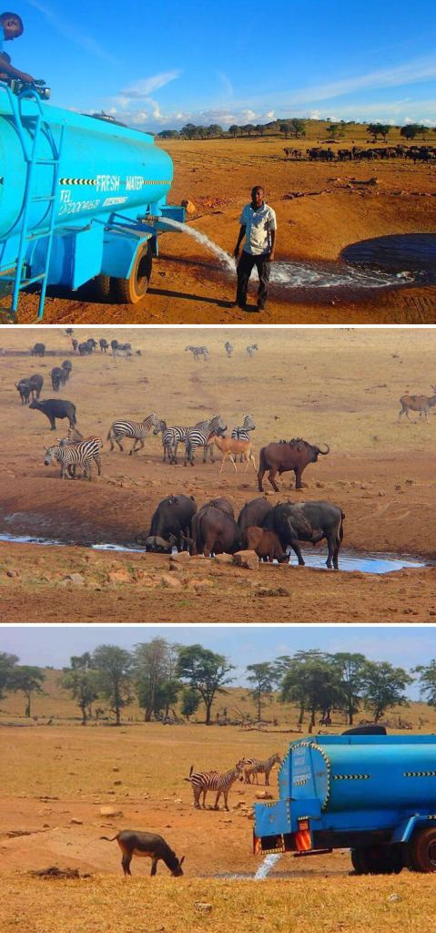 Every Day This Man Drives Hours In Drought To Provide Water To Thirsty Wild Animals