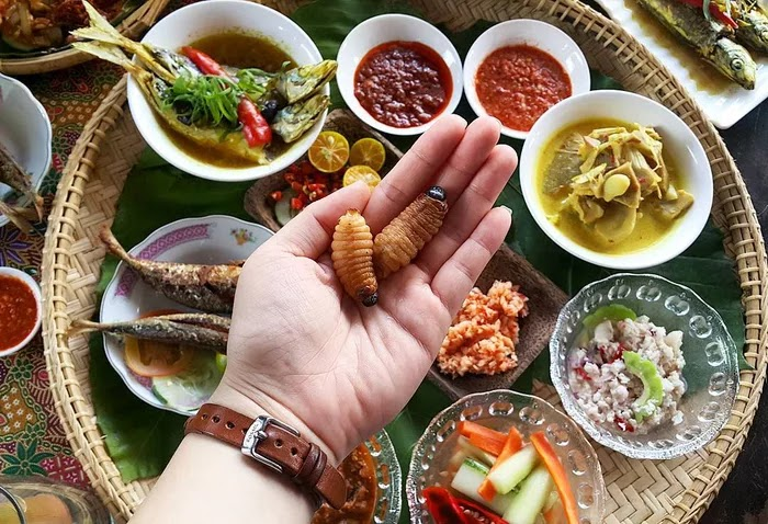 12. Butod, Malaysia