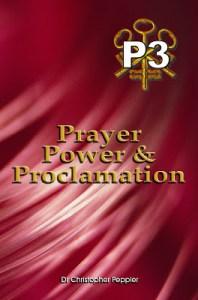 P3 Book Cover