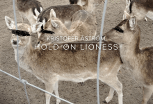 Kristofer Åström – Hold On Lioness