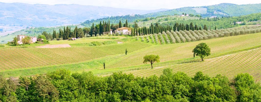 The Chianti Countryside Km Zero Tours