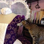 making a 1590s gown for Princess Marguerite, with help from the kitty.