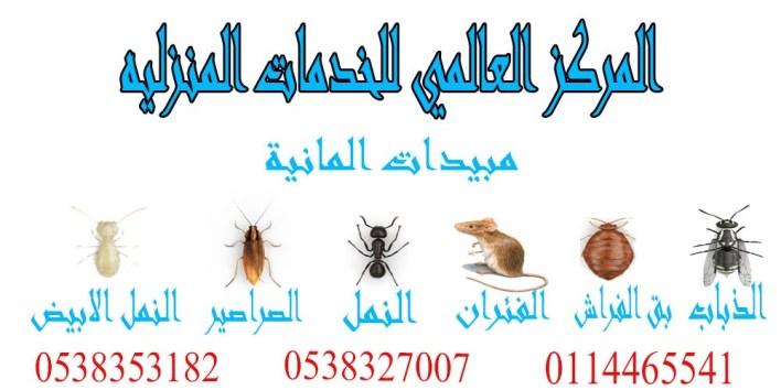 طرق التخلص من الحشرات بطرق بسيطة وسريعة, طرق التخلص من الحشرات بطرق بسيطة وسريعة, شركة المركز العالمي