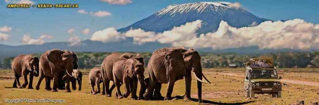 Eléphants - Safaris 3jours Tsavo Amboseli Kenya