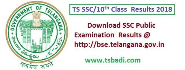 TS SSC Public Examinations Results 2018