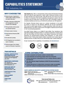 TSE Industries Capabilities Statement
