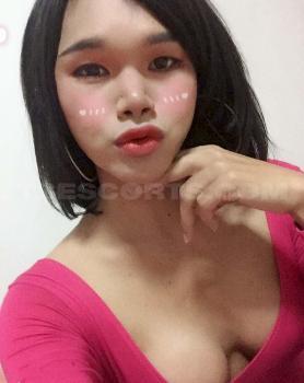 (+66) 82-366-628 -Veera2531 Thailand Tranny Escort