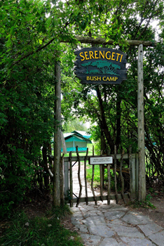 The Toronto Zoo's Serengeti Bush Camp is a unique outdoor experience