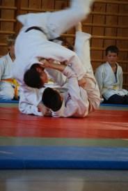 40 J Judo 2012 59